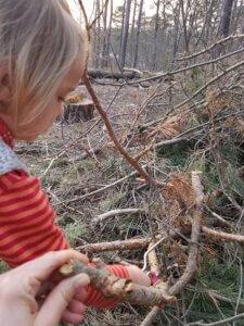 Begleitung beim Sägen: Kind sägt am Ast, Mama hält den Ast